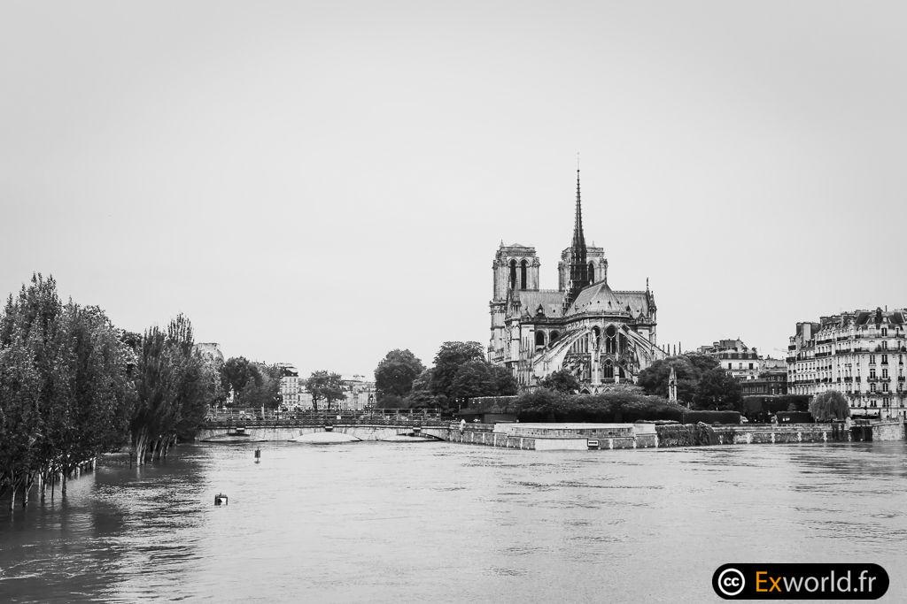 Notre Dame au sec