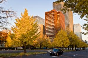 Aki les couleurs d'automne