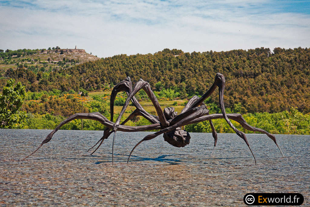 Crouching Spider 6695 de Louise Bourgeois 5