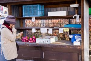 radis à Takayama