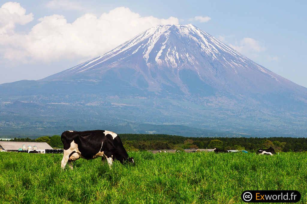 Fuji San de Fumoto