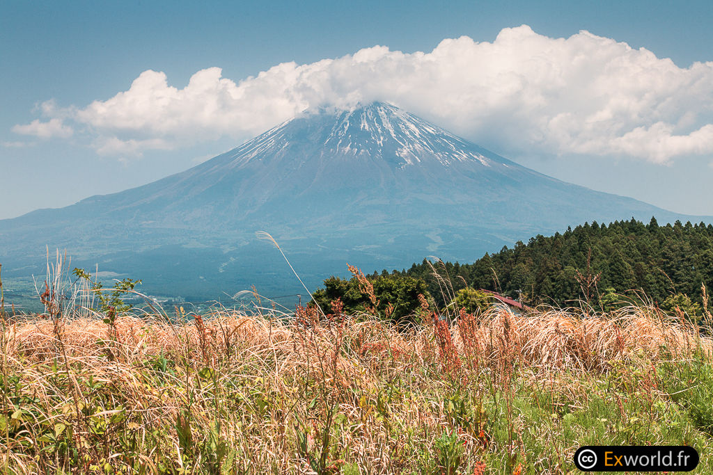 Fuji San de Hara