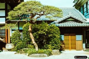 It's not Kyoto