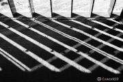 La Chapelle de Tadao Ando 12
