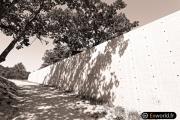 La Chapelle de Tadao Ando 3
