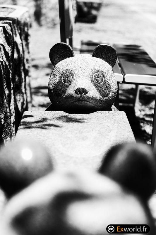 Panda metsuke