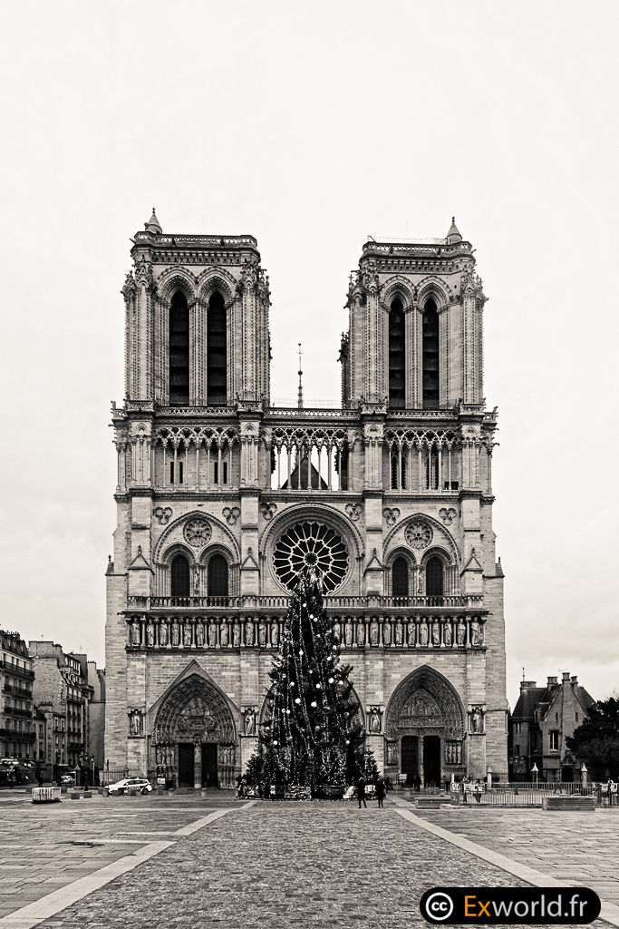 Early Notre Dame