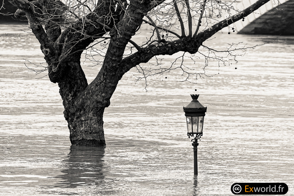 Flood of Paris January 2018_2