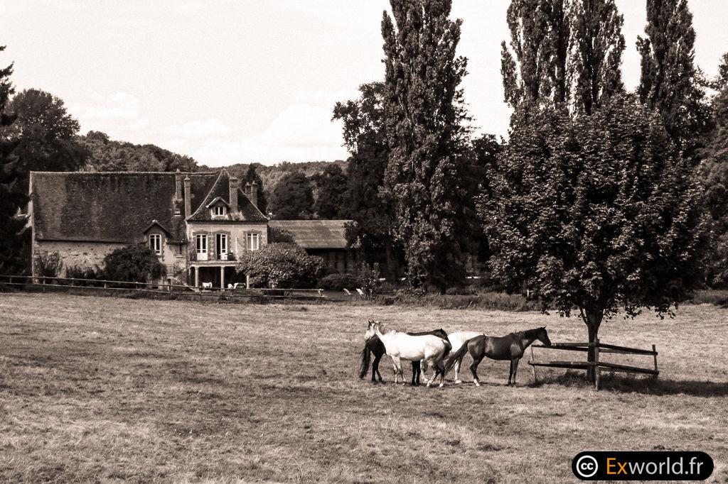 Ranch
