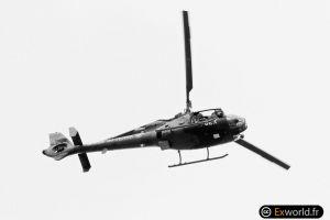 Gazelle HF-V