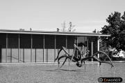 Crouching Spider 6695 de Louise Bourgeois 2