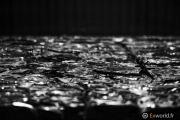 Four Cubes to Contemplate Our Environment de Tadao Ando 11
